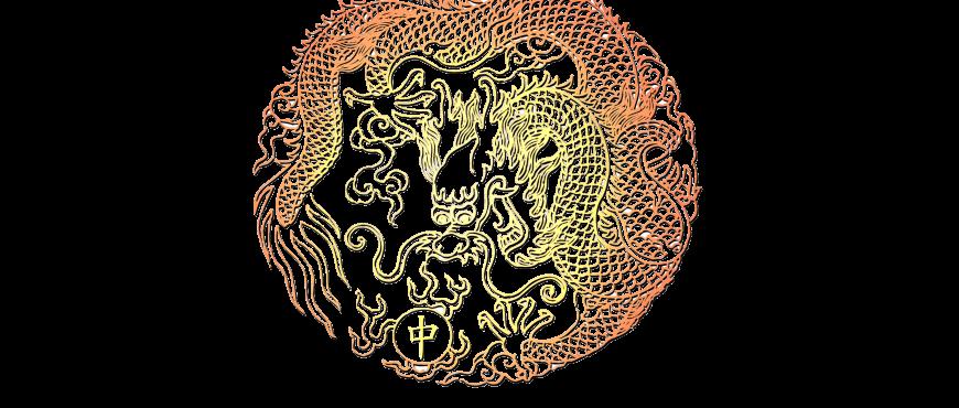 Insight China Logo